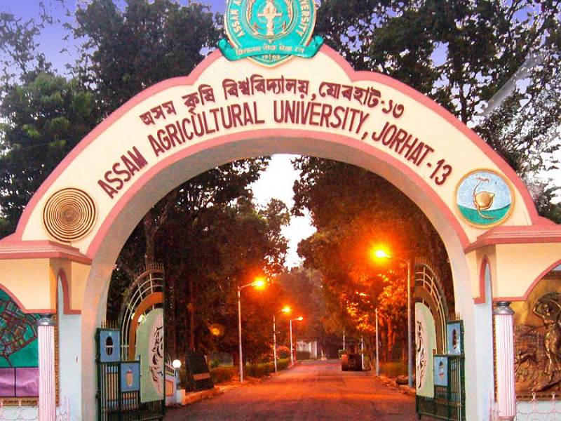 Assam agricultural University invited applications for various posts from eligible candidates