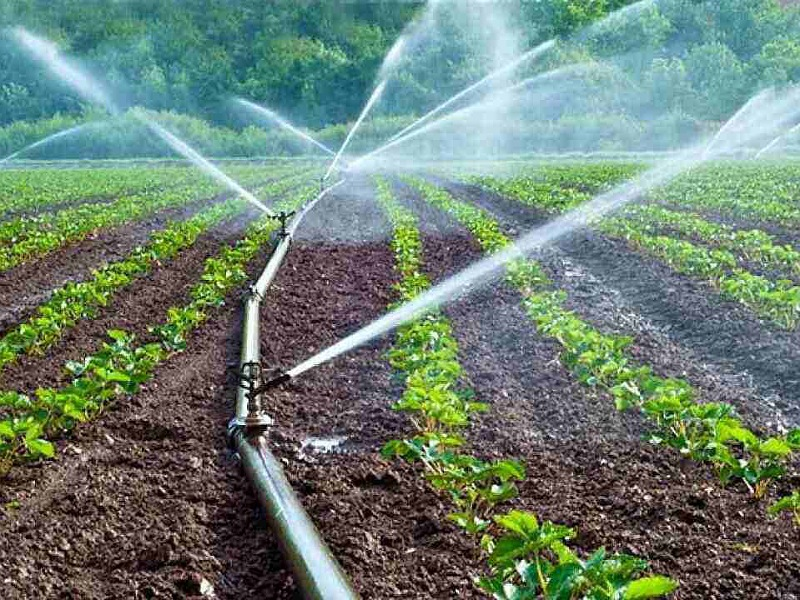 Irrigation system in Farming  field